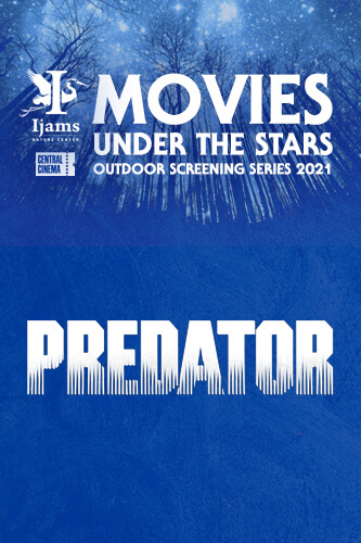 Ijams-predator
